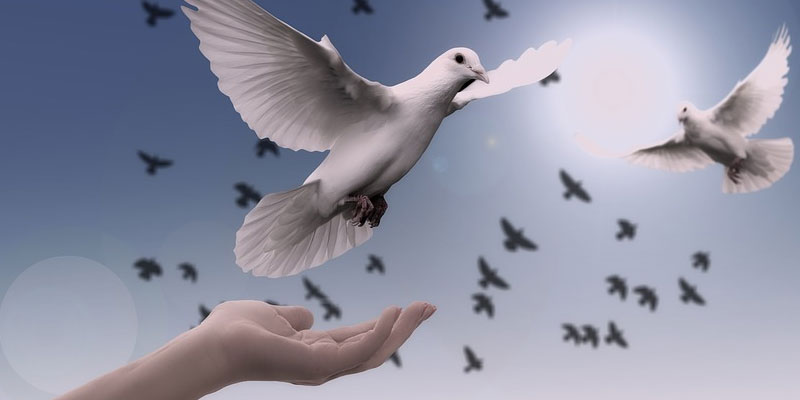 ¿Podremos vivir algún día en paz?