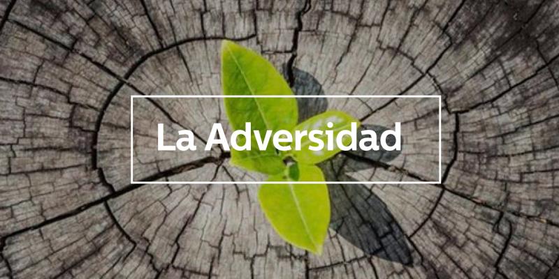 La Adversidad blog Nueva Acrópolis